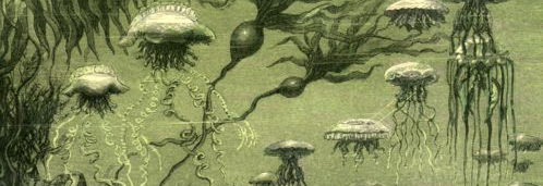 'Twenty_Thousand_Leagues_Under_the_Sea'_by_Neuville_and_Riou_036